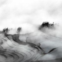Mist Terraces