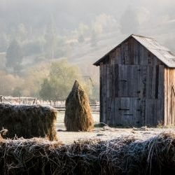 Bucovina  in Frost