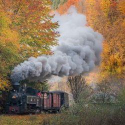 Maramures Steam Train